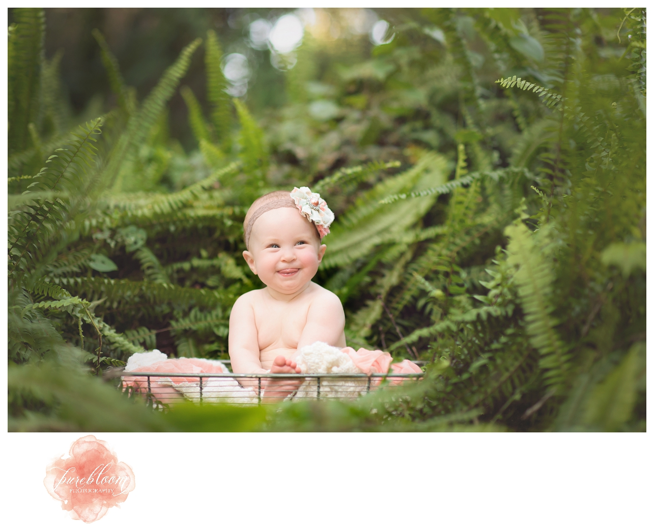 Charlotte 7mth session | South Tampa Child Photographer | Pure Bloom Photography
