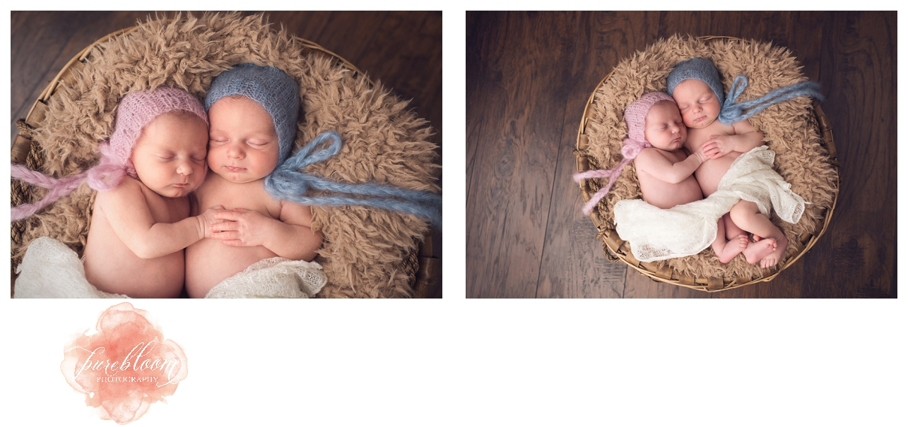 Tampa Artisic Newborn Photographer-Pure Bloom Photography-Twin-sessions