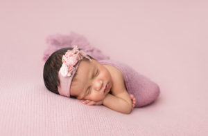 pure bloom photography,tampa newborn photographer, timeless deluxe newborn portraiture