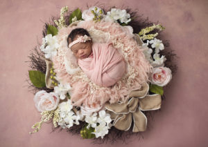 pure bloom photography,tampa newborn photographer